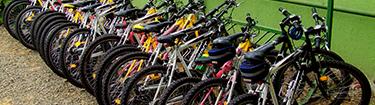 Kerékpárkölcsönzés az erdei isklában